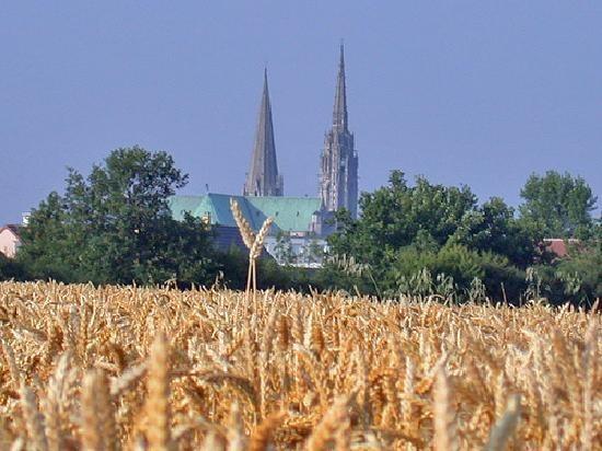 Cette photo de Cathédrale de Chartres est fournie gracieusement par TripAdvisor